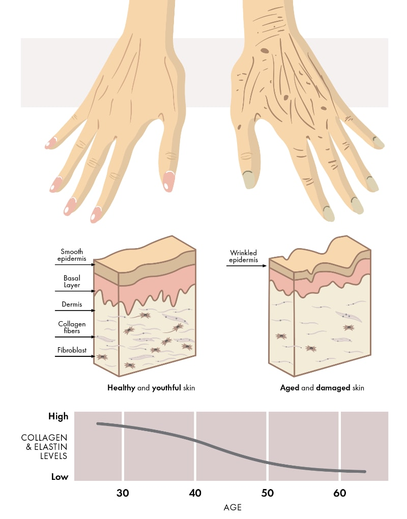 Hand Rejuvenation info